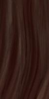 Пассат Настенная плитка Пассат коричневый