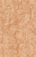 Каменный цветок Настенная плитка Каменный цветок низ