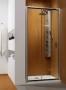 Душевая дверь Radaway Premium Plus Premium Plus DWJ 120