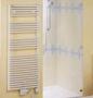 Полотенцесушитель на горячей воде Zehnder LFD-120-060 белый